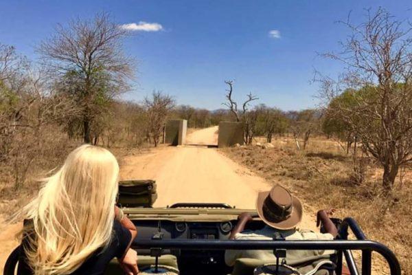 Mal di Safari